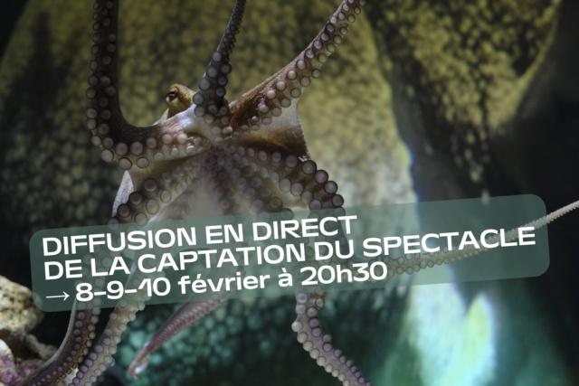 photo tirée du spectacle Temple du présent – Solo pour Octopus de Stefan Kaegi (Rimini Protokoll) + bandeau annonçant une diffusion en direct